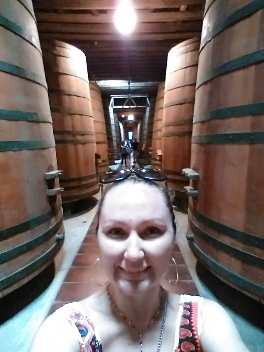 Cousino Macul - Vale a pena visitar a vinícola?