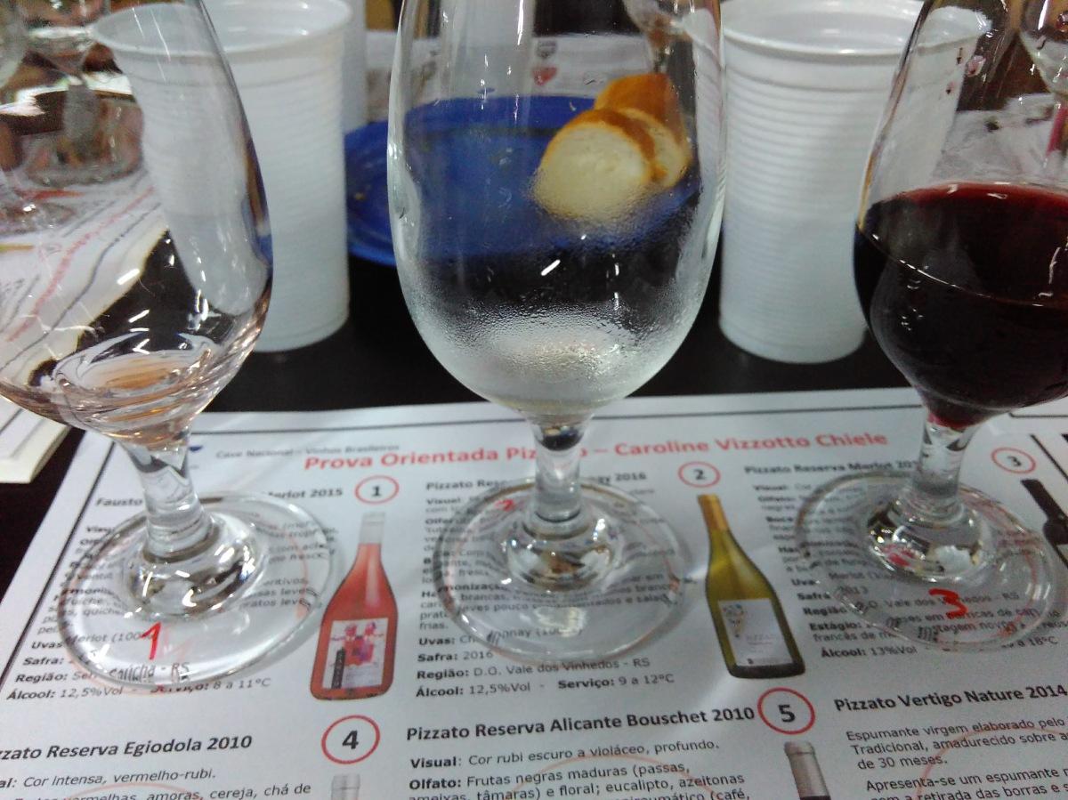 Prova de vinhos orientada: por que é legal fazer uma?