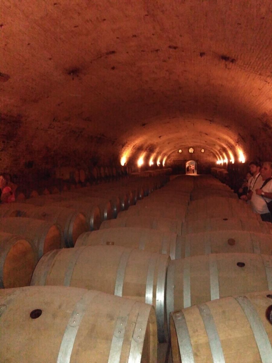 Vinho Reserva, Gran Reserva e Reservado: não se confunda mais!