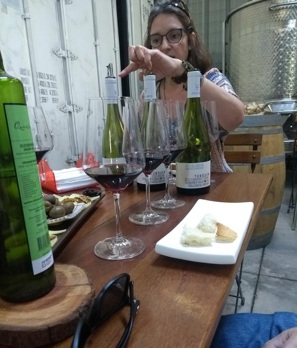 (Chile) Attilio & Mochi e um tour brindado à paixão pelo vinho e ao empreendedorismo